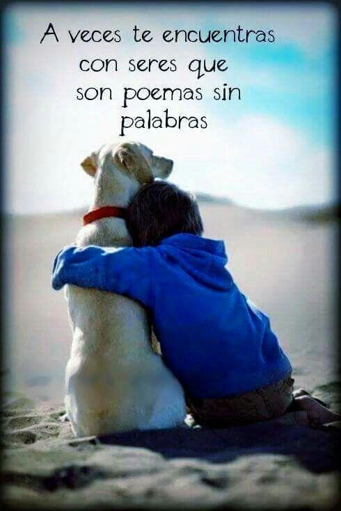 A veces te encuentras con seres que son poemas sin palabras #frases