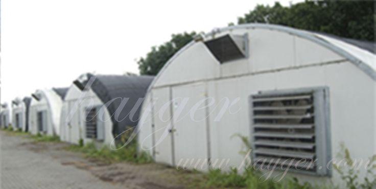 istiridye mantarı üretim tesisleri anahtar teslim istiridye matarı üretim tesis kurulum projeleri