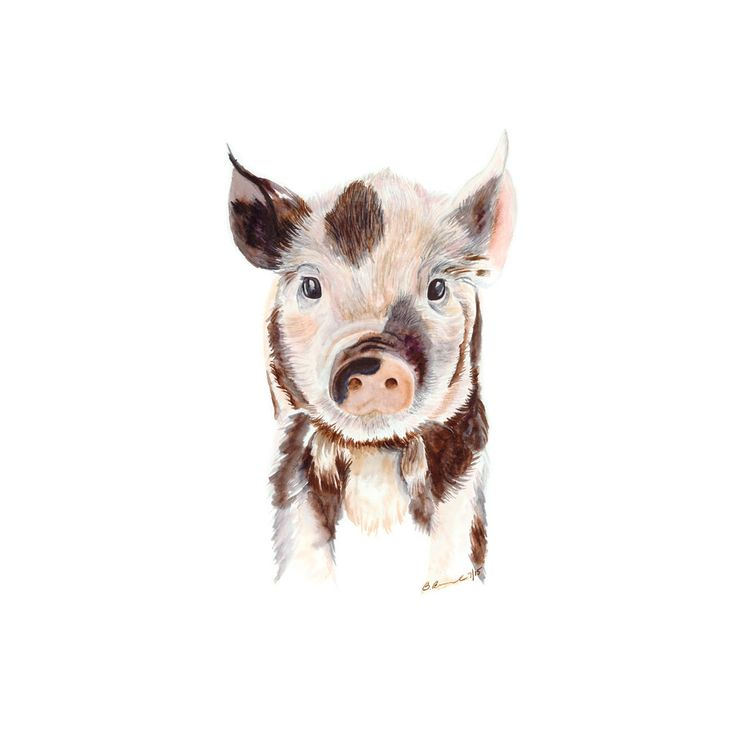 The baby pig is a fine art print of Brett's original piglet watercolor. The neutral tones make it the perfect décor for a farmhouse nursery, or can be paired with other farm animals for a farm animal