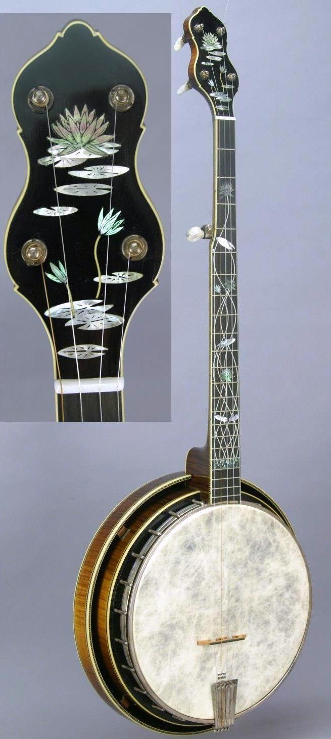 1980 Gryphon 5 string Banjo --- https://www.pinterest.com/lardyfatboy/