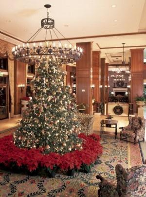 15 best biltmore estate inn dream a little dream images on inn lobby at christmas biltmore asheville nc the inn on biltmore estate malvernweather Images