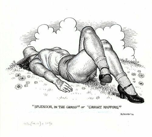 robert crumb art & beauty - Recherche Google