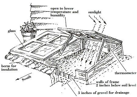 cold frame garden greenhouse