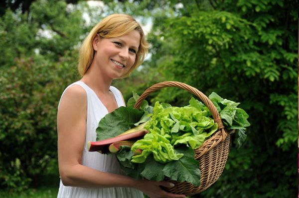 How to grow your own salad greens