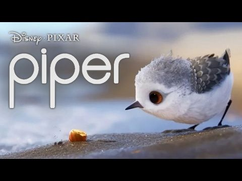 """""""Piper""""-a Pixar Animated short - YouTube - good video for plot  analysis, many more lessons that can be taught using this video"""
