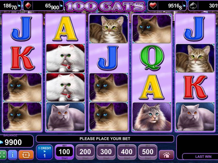 Jetzt spielen online Spielautomat 100 Cats - http://freeslots77.com/de/100-cats/