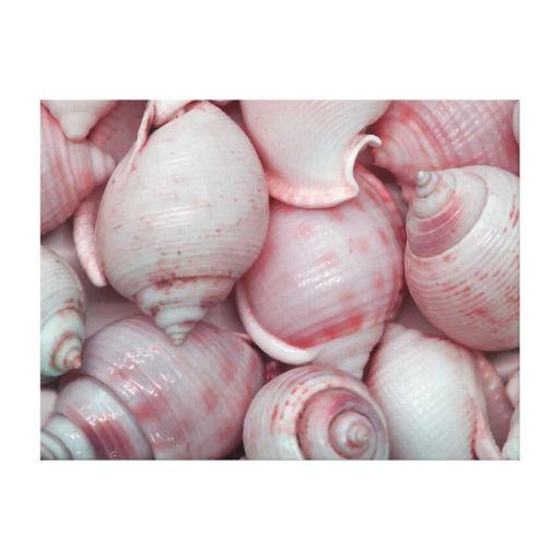 Setzen Sie Kunst auf Leinwandwanddekor mit schönem künstlerischem Bild der Seashellskunst in diesem beruhigenden Farbnoch Lebenbild auf den Strand. Verzieren Sie jedes mögliches Wohnzimmer, Schlafzimmer oder Höhle auf eine tropische Art mit einer Touch der Natur und geben Sie Ihren Wänden etwas Charakter und Art. Farben umfassen Lila, Pfirsich, Rosa und Weiß.