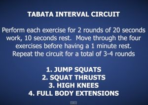 Tabata Interval Circuit Home workout http://hillworks.com.au/hwow