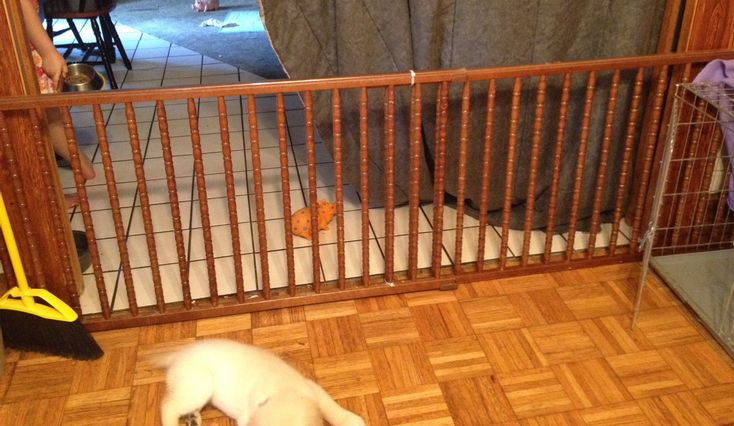 Dog gate made from an old baby crib   Crafty   Pinterest ...