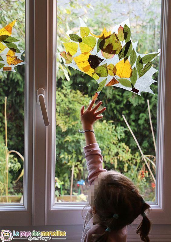 Attrape-soleil d'automne : observer les feuilles d'arbres dans les moindres détails. Une activité d'automne ludique, décorative, facile et rapide à réaliser