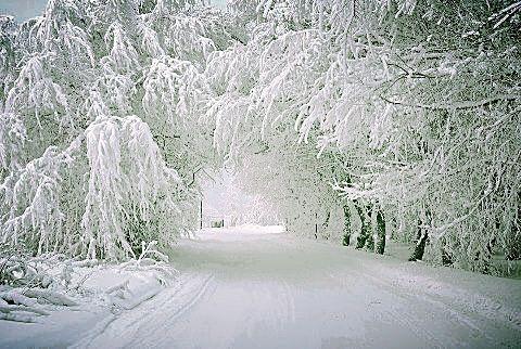 Lake Edna, Michigan
