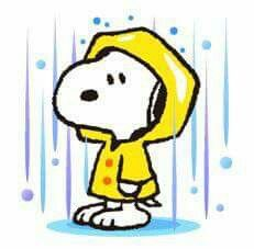~ Snoopy & Friends ♡ ~