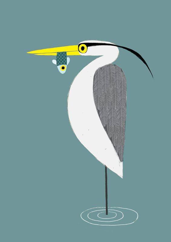 heron with fish - jim field