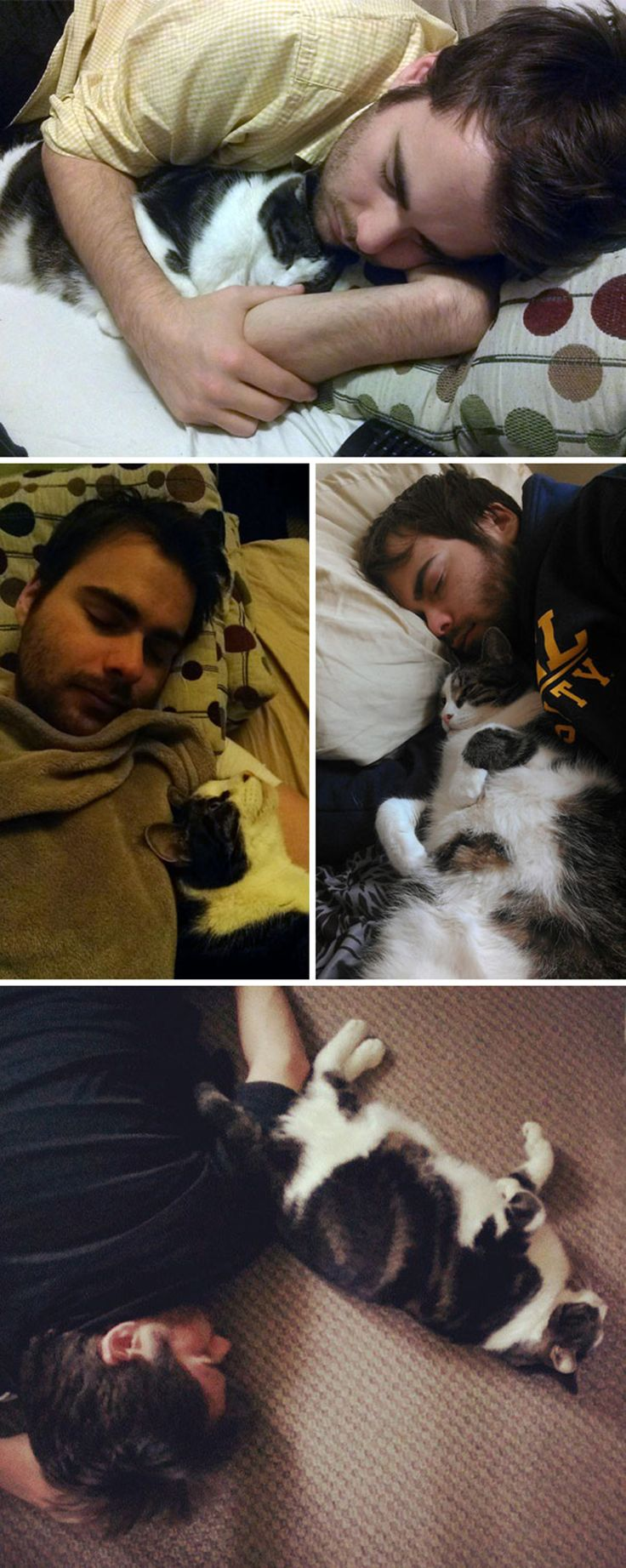 20+ Shameless Pets That Stole Owner's Partner And Didn't Even Feel Sorry