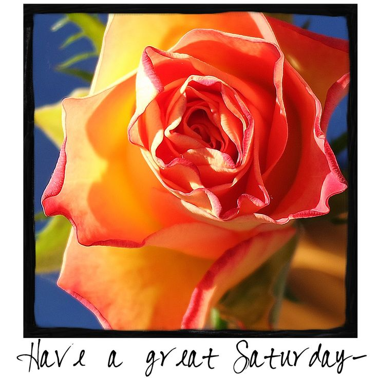 Have a great Saturday and come by and visit me on Facebook!