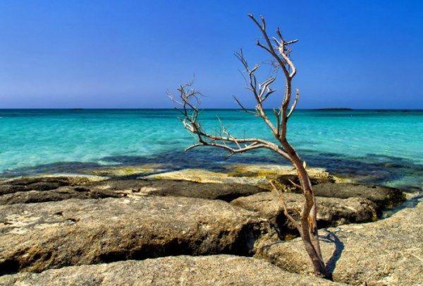 Чудесный остров Крит (15 фото)