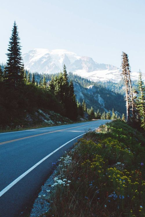 banshy:  Mt. Rainier // Will Sewell