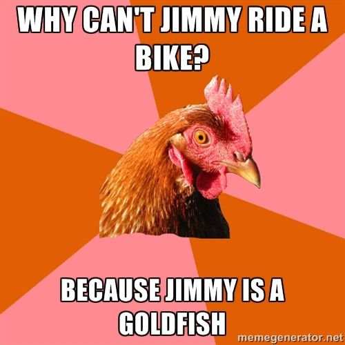 anti joke chicken.. why are these soo funny??