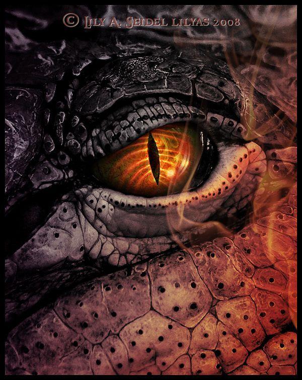 Oeil de dragon de feu ..: