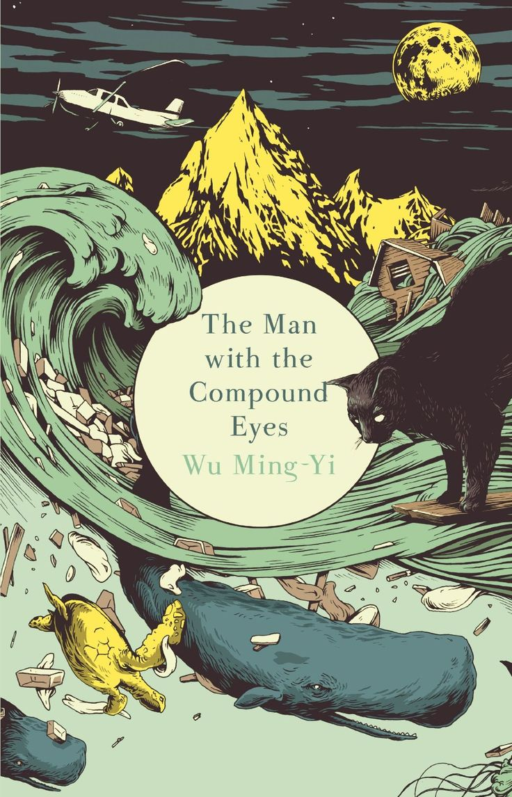 The Man with the Compound Eyes – review