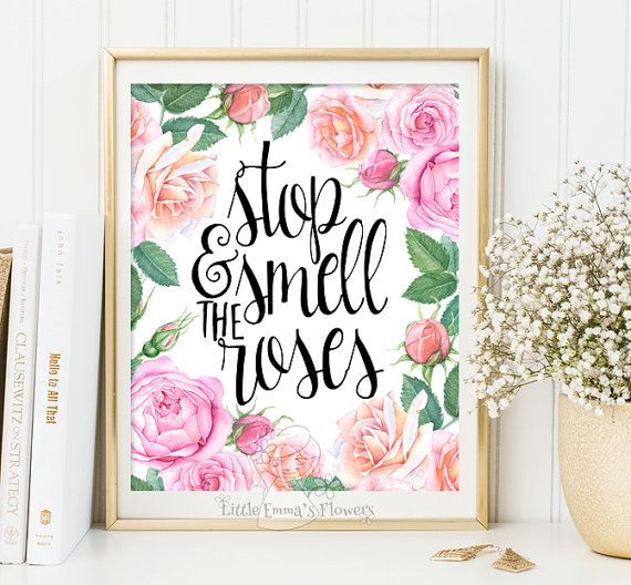Baby nursery prints wall decor Stop and smell the roses printable wall art inspirational quote room decor digital print kids wall art 2-47