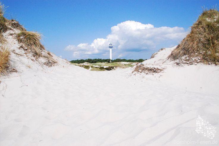 Leuchtturm Dueodde Fyr zwischen den Dünen von Dueodde