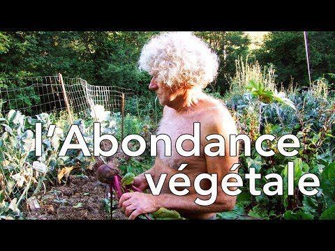 l'Abondance Végétale (selon Philip Forrer) - culture sur buttes - YouTube