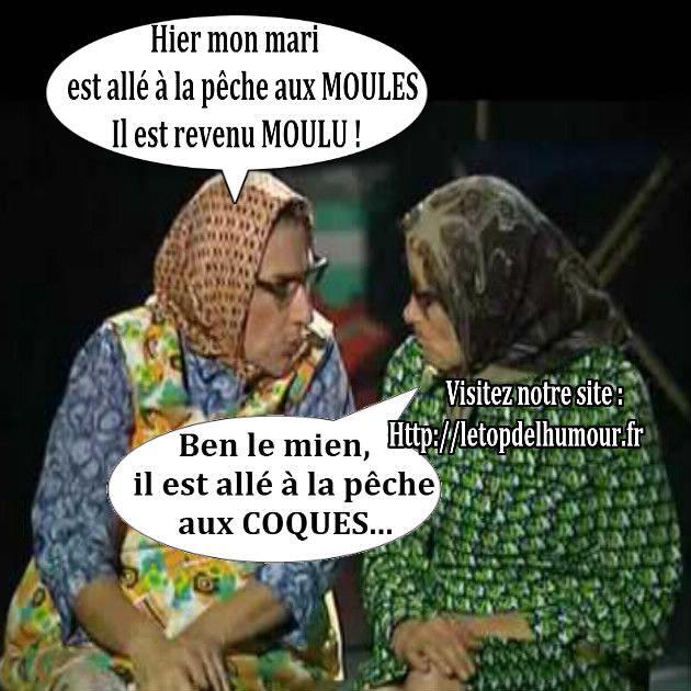 peche-aux-moules-moulu-peche-aux-coques