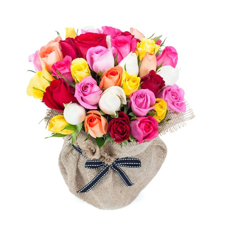 Surprise your dad with our mid-night father's day special flower delivery from India Cakes N Flowers!  To buy flowers, please click on the below link :  http://www.indiacakesnflowers.com/product-category/roses/  Contact No : 9216850252  Website : http://www.indiacakesnflowers.com  #flowersinpunjab #sendflowerstofatherpunjab #sendflowerstoPunjab #flowerdeliverytoPunjab  #flowerstofatherjalandhar #sendflowersinJalandhar