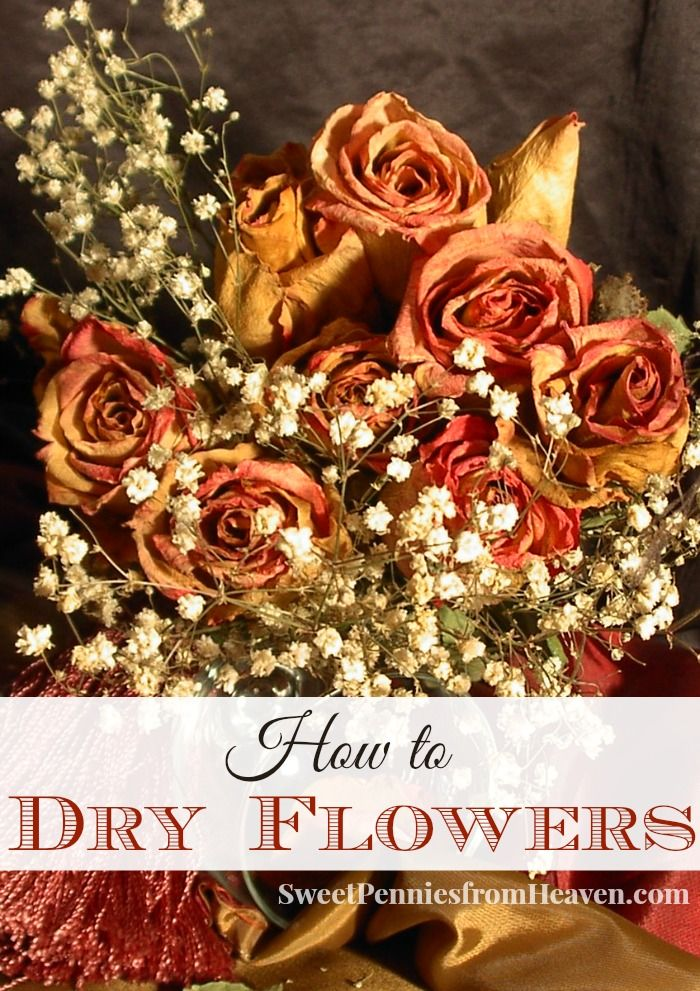 How to Dry Flowers for Crafts, Potpourri or Other Home Decor. It's really simple to do. Dried flowers make excellent homemade potpourri and there are so many fun uses for crafts and DIY projects!