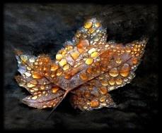 Copper water droplets on leaf