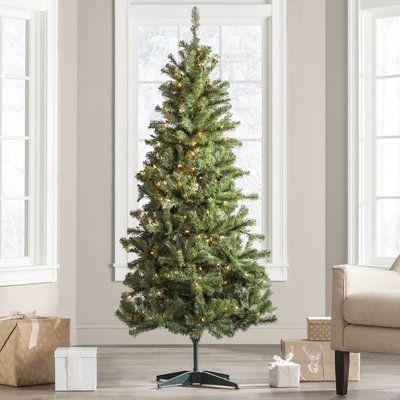 Wayfair Basics™ Green Fir Artificial Christmas Tree with Clear