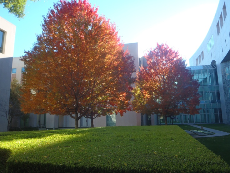 Inside the Senate Courtyard at the Australian Parliament House in Winter.
