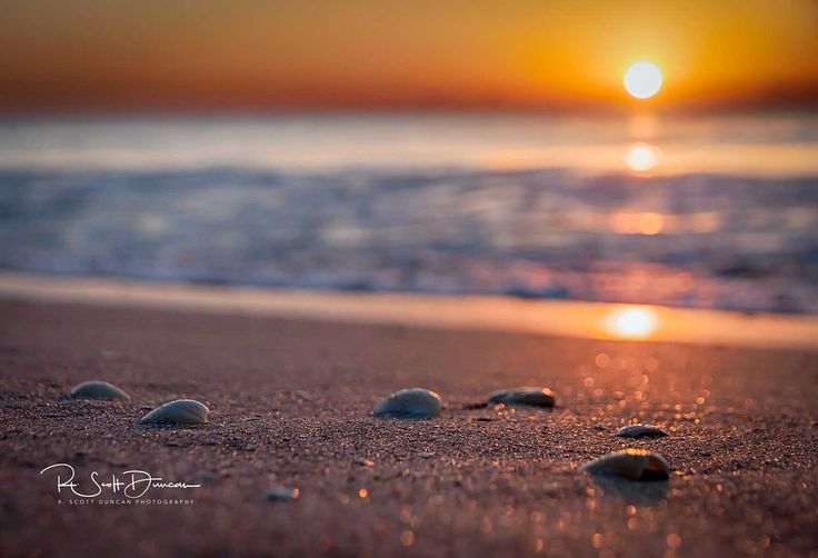 Shoreline Sunrise by R. Scott Duncan
