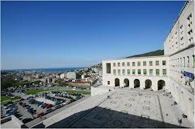 """Università degli Studi di Trieste, Laurea Specialistica """"Pubblicità e Comunicazione d'Impresa"""". Luglio 2008. Voto: 110/110 e lode."""
