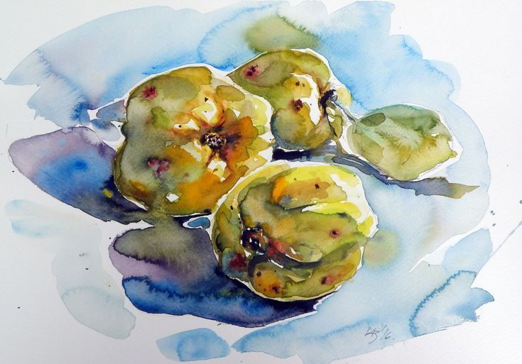 Quince Still Life Watercolor Paintings For Sale Painting Still