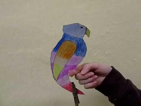 Papoušek od Majdy