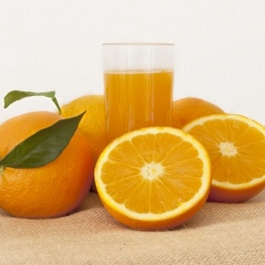 Cítrics el Plà - Organic Farming Navelina Orange for Juice