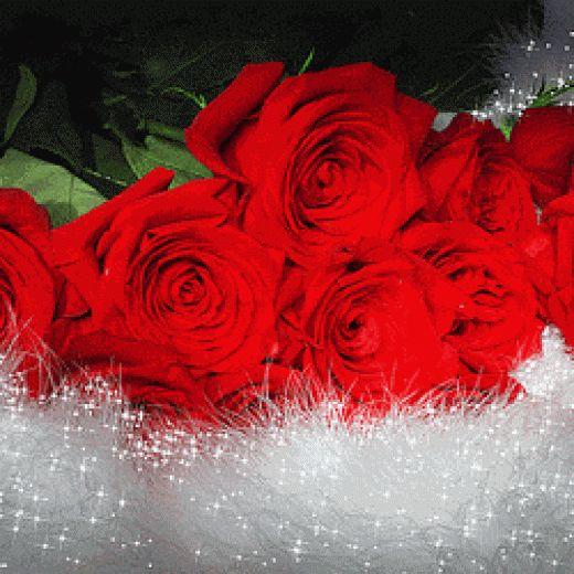 Resultado de imagen para flores para caballeros gif