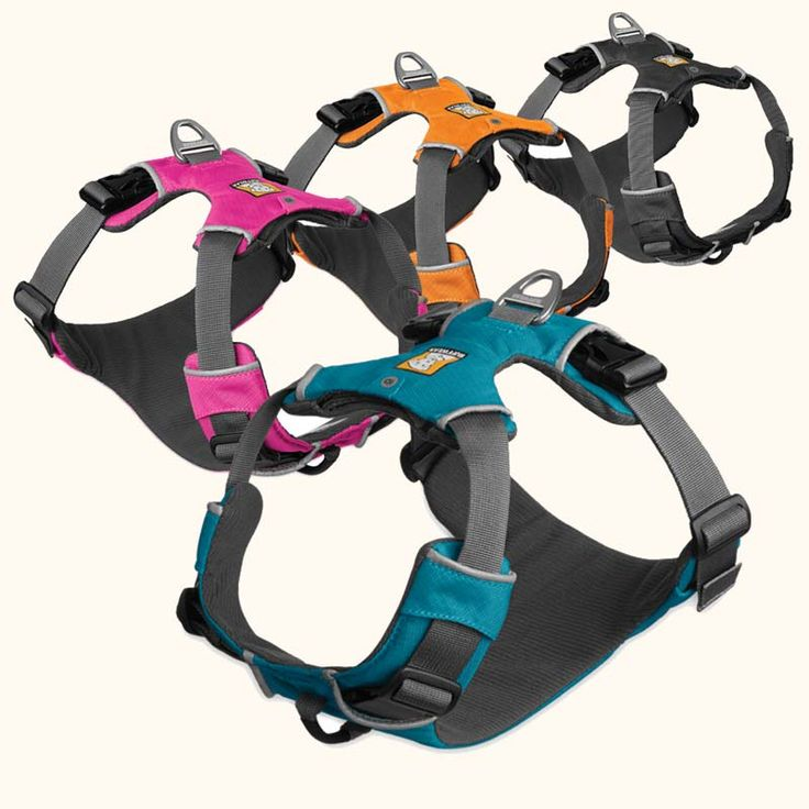 Front Range Dog Harness. Leash clips on in front for more vontrol, less pulling.  Or clip on the top for regular exarcising.