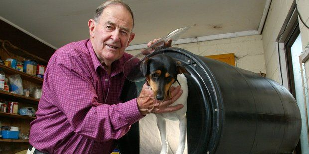 KELVIN - THE THERMOKENNEL Learn about heat transfer and insulation in this story of innovation.  It is said that dogs are man's best friend, and here in New Zealand, you could also say dogs are a farmer's best friend. Across New Zealand, there is an estimated workforce of 200,000 farm dogs! Farm dogs are valuable assets on the farm, and they need to be kept healthy in order to do their work well.