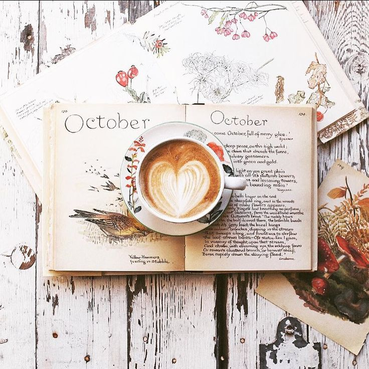 October art photography. Foam heart in latte cup. Bird, flower & mushroom sketches & paintings in journal on weathered white painted wood background.
