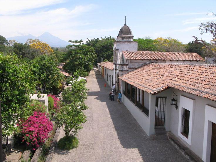 Nogueras Comala, Colima. México