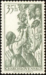Czechoslovakia, 1956. Cultivation of Hops