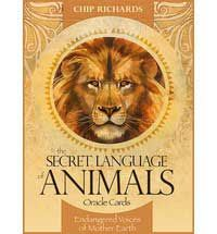 65 best mind body spirit oracle cards to buy images on pinterest secret language of animals oracle cards by chip richards dseclan 2195 magickal fandeluxe Choice Image