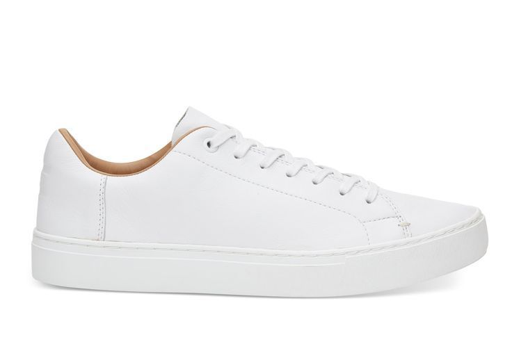 adidas chaussures homme blanche