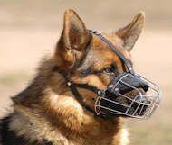 #Wire #Basket #Dog #Muzzle for #German #Shepherd #Breed $29.99 | www.all-about-german-shepherd-dog-breed.com
