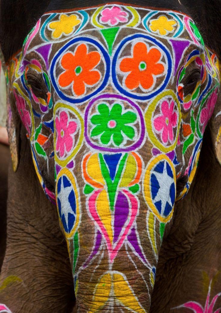 Painted elephant face - India
