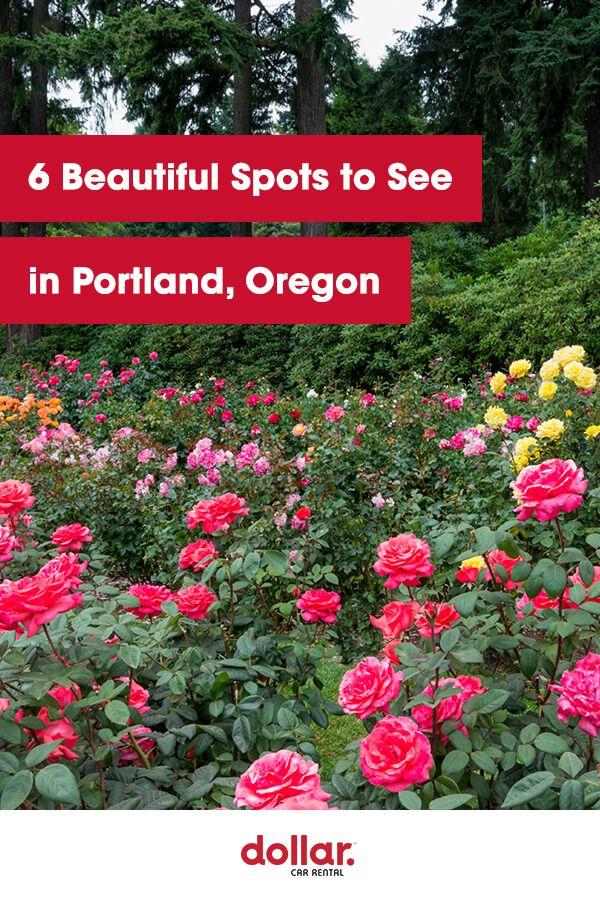6 Beautiful Spots To See In Portland Oregon Beautiful Spots Oregon Visit Portland
