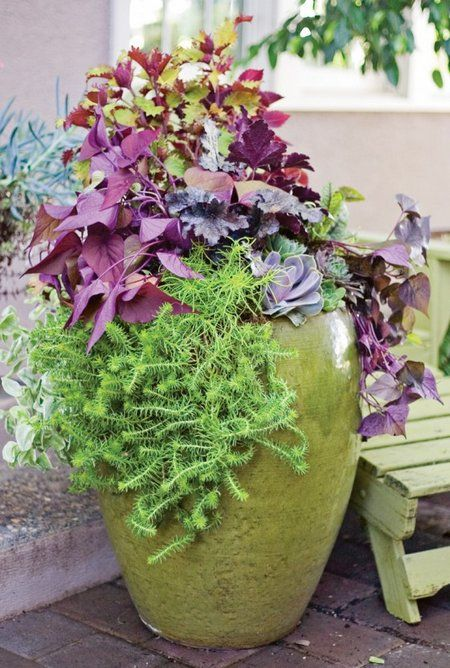 17 best ideas about fall container gardening on pinterest for Perennial container garden designs